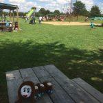 Ottie chillt unter Bäumen im Bubenheimer Spieleland