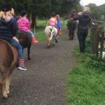 Ponyausritt im Birkenhof