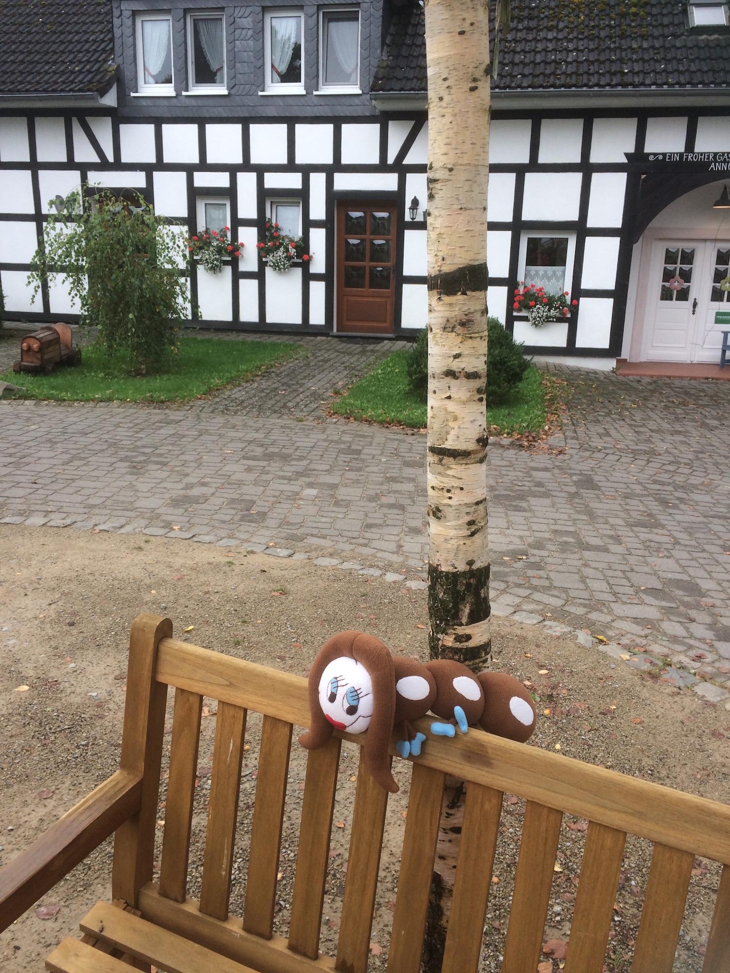 Ottie im Innenhof des Birkenhofs