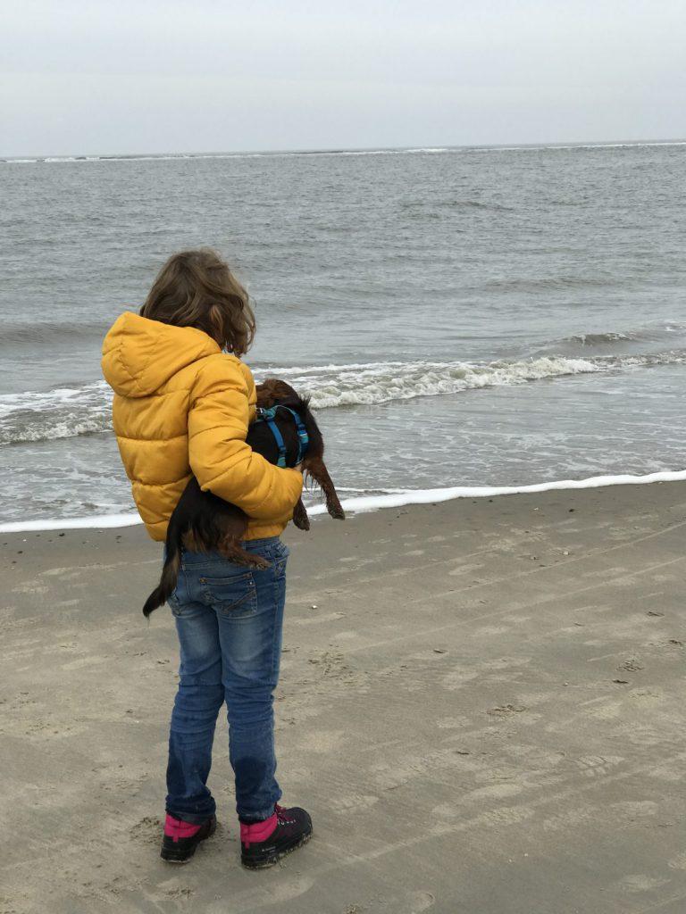 Am Hundestrand von Baltrum